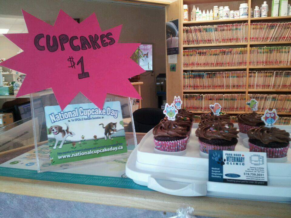 Cupcakes at Park Road Veterinary Clinic