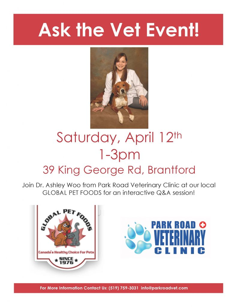 Ask the Vet event poster with Dr. Ashley Woo and a dog