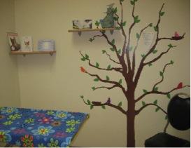 Cat-friendly room at Park Road Veterinary Clinic