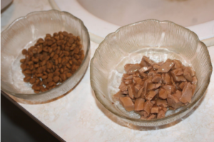 Cat food in bowls