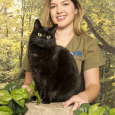 Nicole Mortimer Animal Care Assistant at Park Road Veterinary Clinic